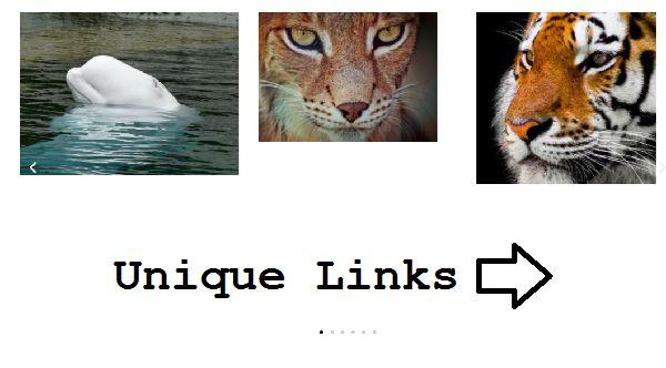 Elementor Image Carousel Links - Custom Link for Each Image
